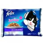 Храна за котка Felix 4*100g jinior пиле-/-